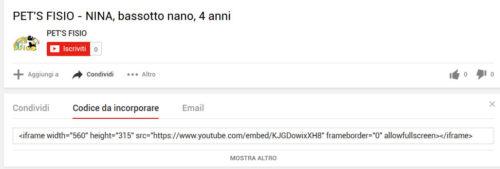 YouTube - codice da incorporare